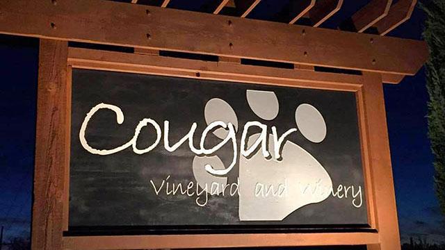 Cougar Vinyard